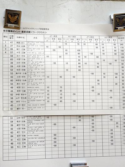 2011FCIアジリティーワールドチャンピオンシップ派遣選考会<ラージ>