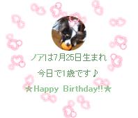ノア@1歳のお誕生日
