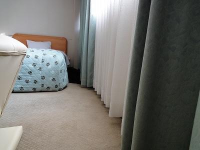 ベッドの脇で寝るキャンティ