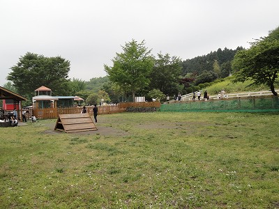 まかいの牧場のドッグラン