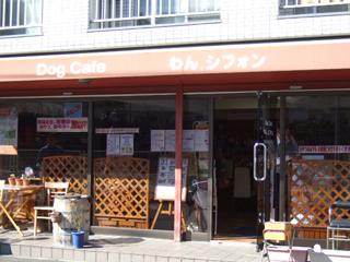 Dog Cafe わんシフォン