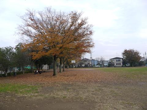 手賀沼公園芝生広場