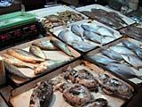 市場の魚屋さん
