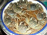市場の上海蟹