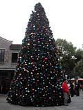 新天地のクリスマスツリー