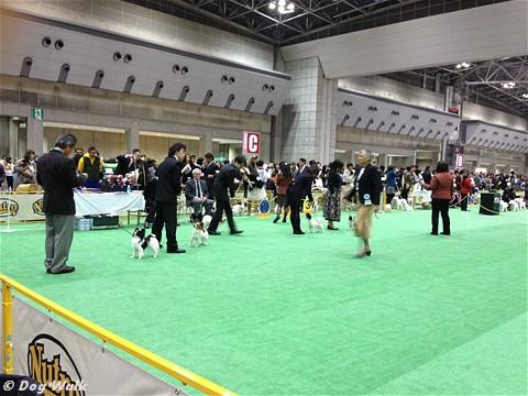 FCI ジャパンインターナショナルドッグショー2012