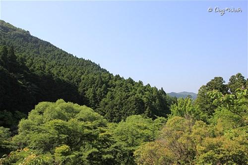 上佐ケ野親水公園