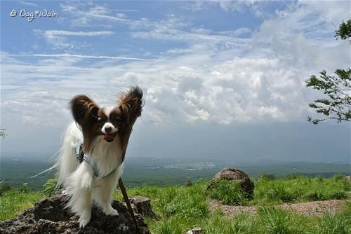 ノア@富士見高原リゾート