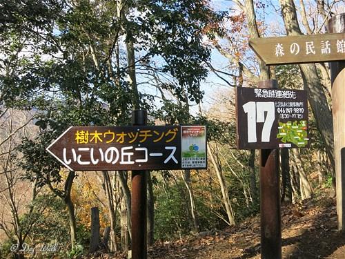 散策コース