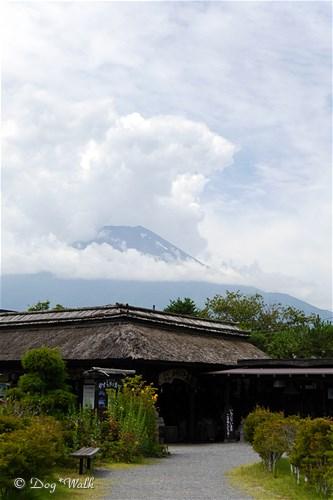 茅葺茶屋と富士山