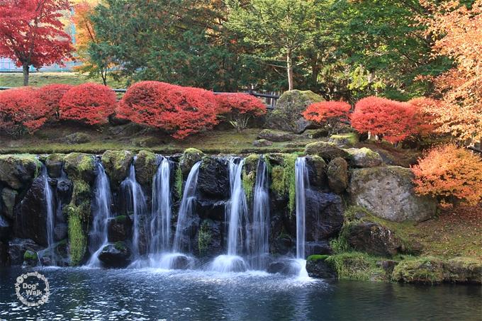 紅葉と小滝