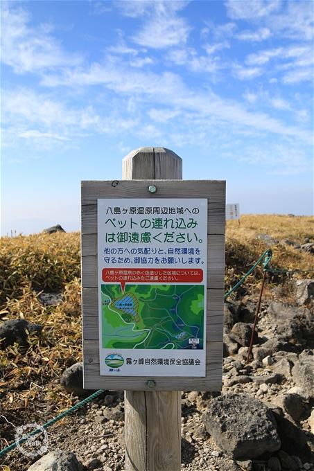 八島ヶ原周辺地域はペットNG