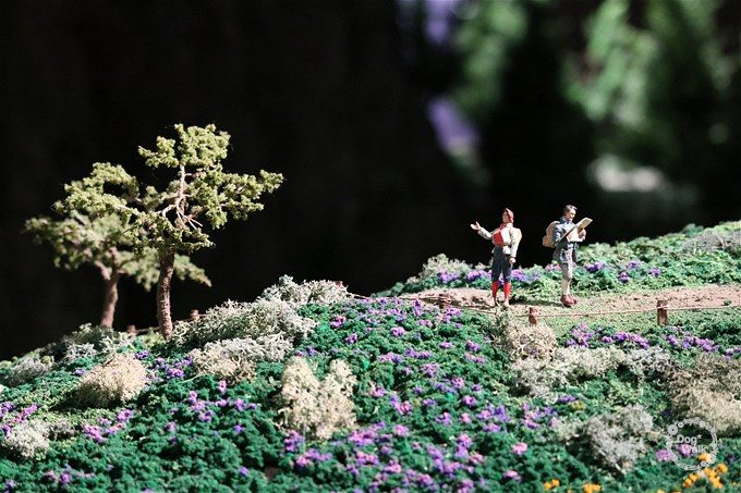 ハイキング中のカップル