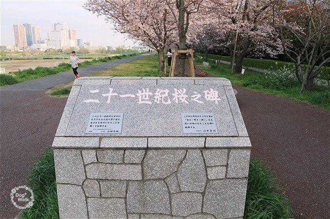 二十一世紀桜之碑