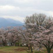 権現山展望台からの眺め2