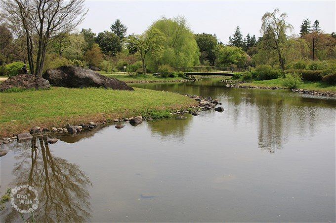 砂川口方面の池