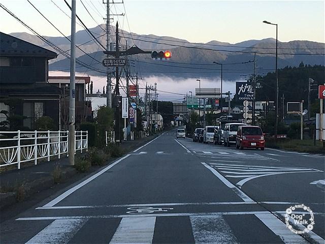 富士吉田の雲海