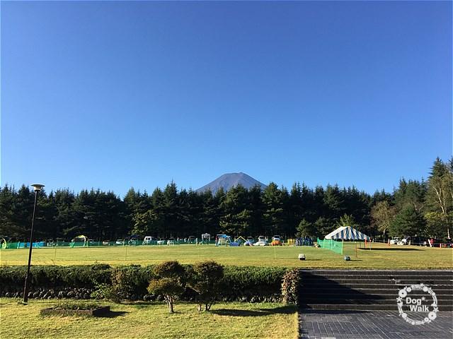 富士山が見えるアジリティーセミナー会場