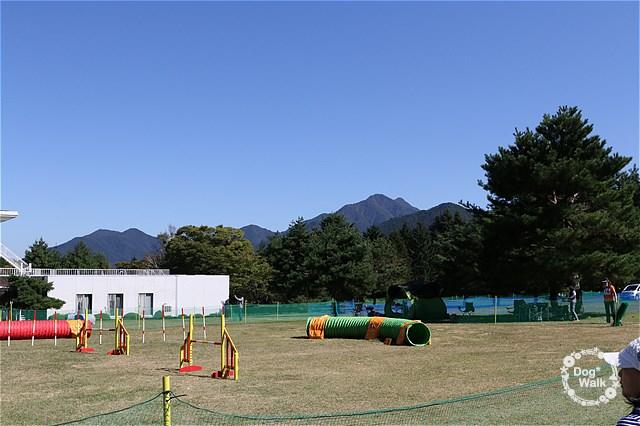 富士山を背にしてみたアジリティーセミナー会場