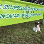 ノア@2017OPDESジャパングランプリ