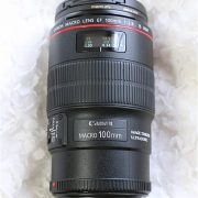 Canon EF100mm F2.8Lマクロ IS USM