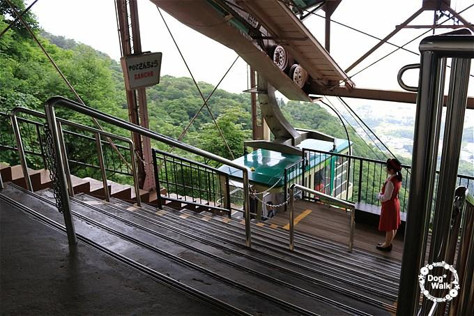 弥彦山山頂駅
