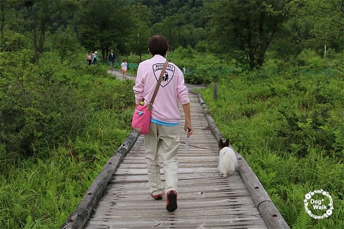 ハマクロとノア@乗鞍高原一の瀬園地周遊コース