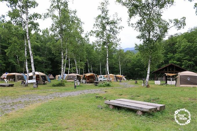 一の瀬キャンプ場