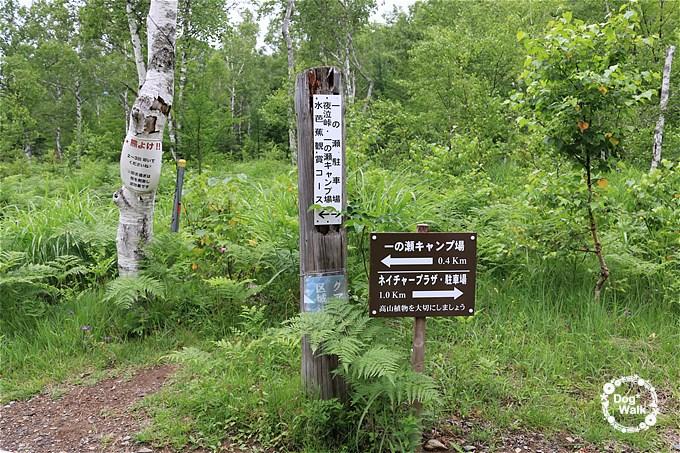 一の瀬キャンプ場入口