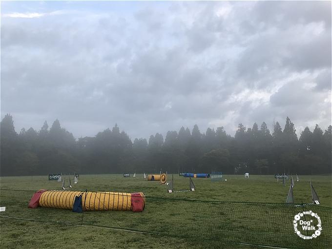 霧が立ち込める競技会場