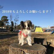 ホッピー@新年のご挨拶
